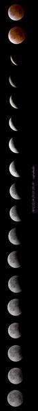 111210_eclipse.jpg